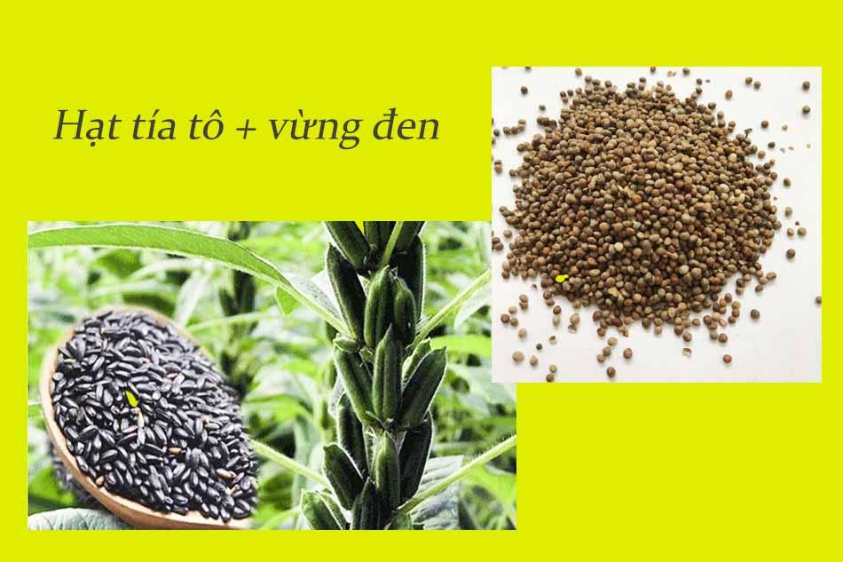 Dùng hoa vừng đen kết hợp với hạt tía tô chữa trĩ